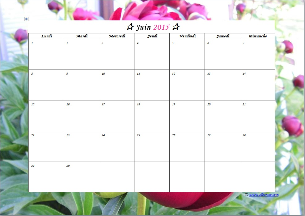 Calendrier juillet 2015 juin 2016 vierge pictures to pin for Calendrier jardin juin 2015