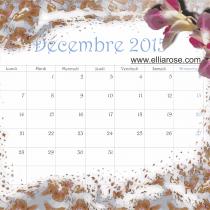 Calendrier décembre 2015 Ellia Rose Bleu clair