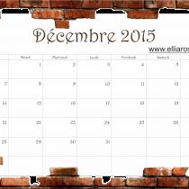 cal décembre 2015 Ellia Rose briques