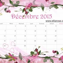 calendrier décembre 2015 Ellia Rose rose