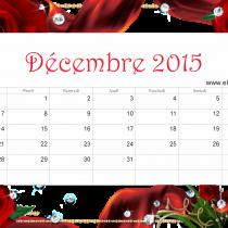 Dec 15 ER