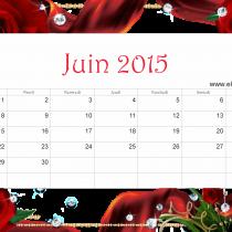 Juin 15 ER