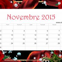 Nov 15 ER