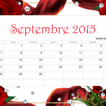 Sept 15 ER