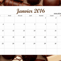 Calendrier Janvier 2016 Ellia Rose