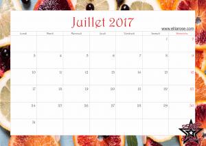 calendrier-2017-ellia-rose-agrumes-juillet