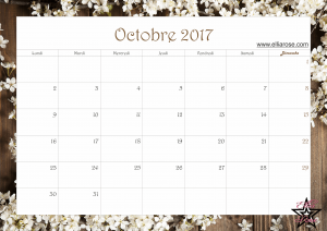 calendrier-2017-ellia-rose-printemps-octobre