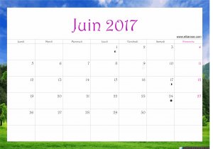 juin 2017 calendrier ellia rose paysage