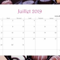 Calendrier Ellia Rose Chocolats 2019 Juillet