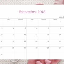 Calendrier Ellia Rose Macarons Rose soft 2018 Décembre